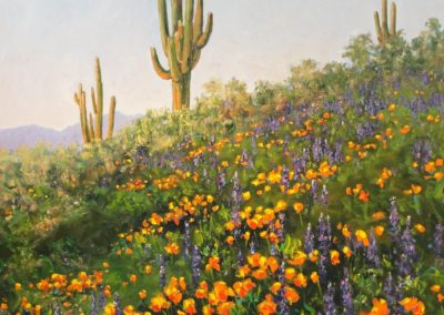 Mexican Poppies and Lupine Flowers