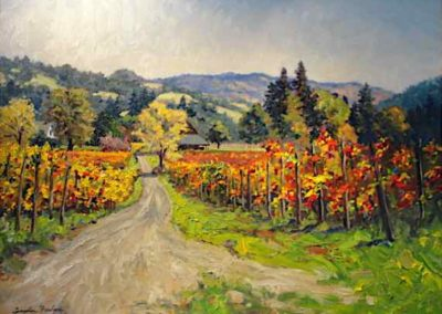 Philo Vineyard, California