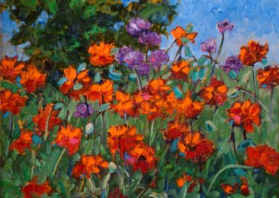 Poppies and Allium Flowers