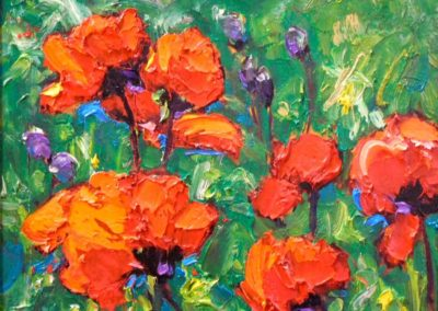 Real Oriental Poppies