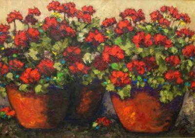 Red Geraniums II