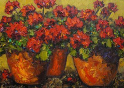 Red Geraniums in Ceramic Pots