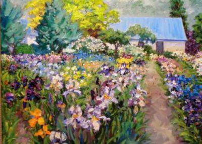 Spring Iris Patch
